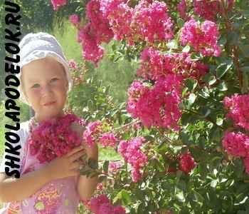 Загадки про лето для детей