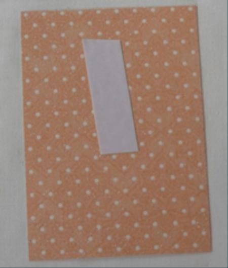 Скрапбукинг. Обложка на паспорт от Риммы Небесной