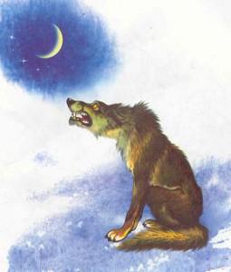 Стихи про волка для детей. Лучшие детские стихи про волка