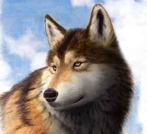 Детские стихи про волка