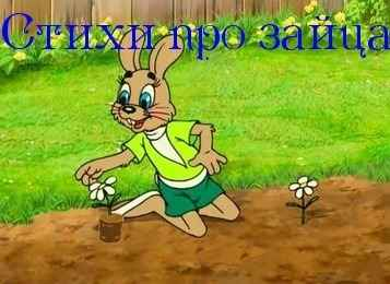 Стихи про зайца для детей